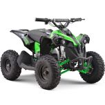 Renegade 36V 500W ATV Electric ATV Off Road Kids ATV, Kids Quad, Kids 4 Wheelers (Green)